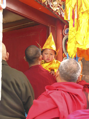 The 5-year-old new incarnation of Choeshyi Rinpoche (AA)