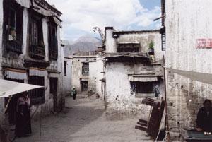 Lhasa Banak Shoel quarter (Alexander 1994)