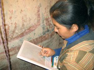 THF conservation of historic Tibetan Buddhist wall-paintings in Amdo Serkhang: trainee Shardruktso
