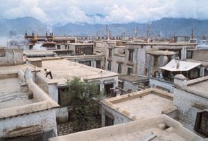 Lhasa inner Barkor Oedepug Conservation Area, Cultural Relics/THF cooperation project
